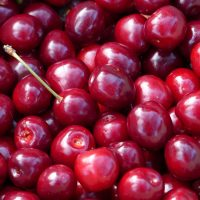 Cherry Fruit and Its Wonderful Compounds